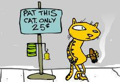 Игра Pat Cat
