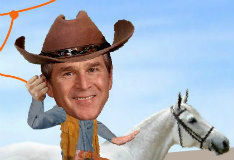 Bush This Land