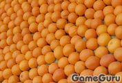 Игра Апельсины