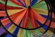 Игра Цветное колесо