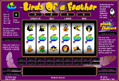 Игра Birds of a Feather Slots