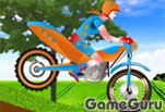 Игра Perfect Motorbike Beauty