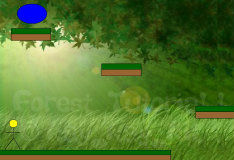 Игра Adventures in forest