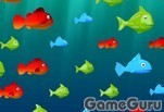 Игра Feed the Fish