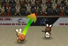 Кролики баскетболисты