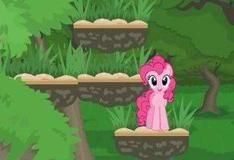 Прыжки пони