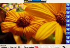 Игра игра Найди числа: цветы