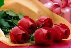 Игра Найди отличия: розы