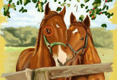 Игра Ищем отличия с лошадьми
