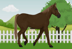 Игра Ухаживай за лошадью