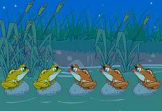 Игра Загадка с лягушками