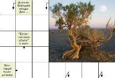 Игра Дерево пустыни