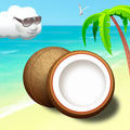 Игра Coconut Beach