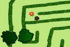 Игра Цветы для Канделы