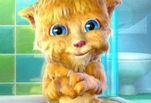 Играть бесплатно в Говорящий кот Рыжик