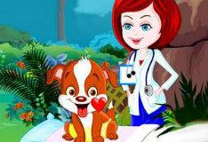 Игра Заботливый ветеринар