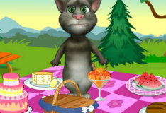 Игра Кот Том на пикнике