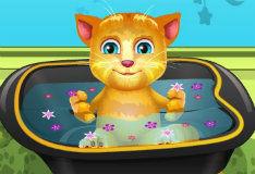 Кот Рыжик принимает ванну