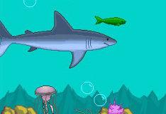 Игра Жизнь рыб