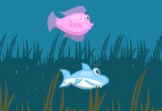 Игра Акула-малютка