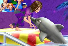 Игра Шоу дельфинов