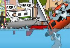 Акула в Майами