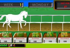 Игра Получи в подарок белого коня и участвуй в гонках