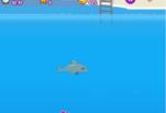 Играть бесплатно в Шоу дельфинов 2