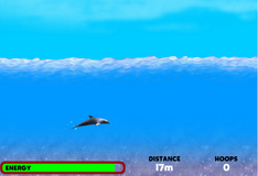 Дельфин Терри