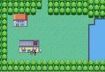 Игра Игра Покемоны Лесной Квест