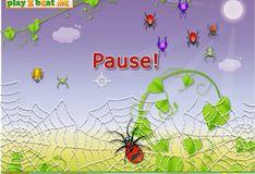 Игра Паук охотится на насекомых