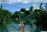 играйте в Игра Рыбалка на озере