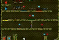Игра Огонь и Вода 3: В Лесном Храме