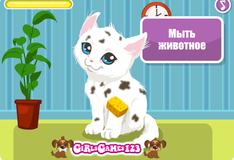 Игра Уход за котенком