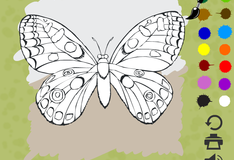 Игра Бабочка раскраска