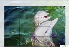 Игра Дельфины: слайд-пазл