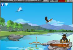 Стрельба из лука по птицам