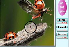 Игра Поиск цифр: насекомые