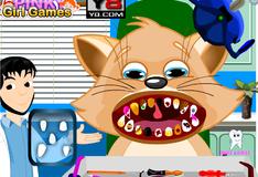 Игра Уход за зубами кота