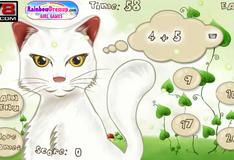 Игра Математика с котом