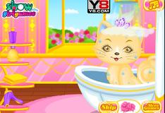 Игра Очаровательный  котенок