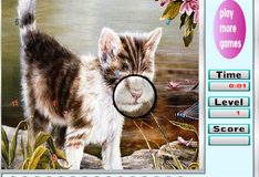 Игра Фото с котиком