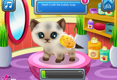 Игра Приведение в порядок внешности котика
