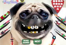 Игра Лечение зубов мопса
