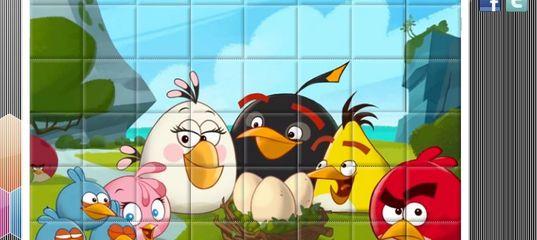 Игра Злые птицы: Счастливая семья