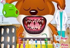 Игра Стоматолог для животных