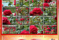 Игра Сад с розами