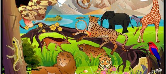 Игра Найди цифры в зоопарке