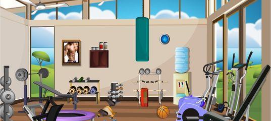 Игра Скрытые объекты: Спортзал