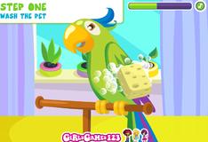 Игра Купание попугая